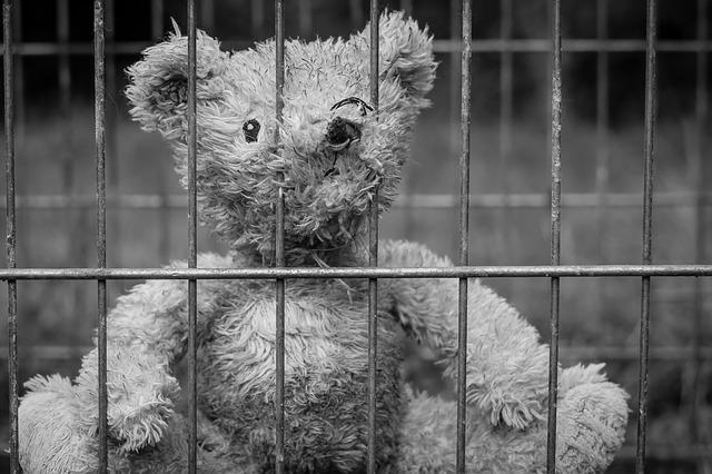 teddy 2711675 640 - Was passiert, wenn ein Elternteil ins Gefängnis muss? ZDF-Bericht über das Eltern-Kind-Projekt